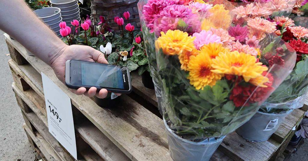 En hånd som skanner en blomst