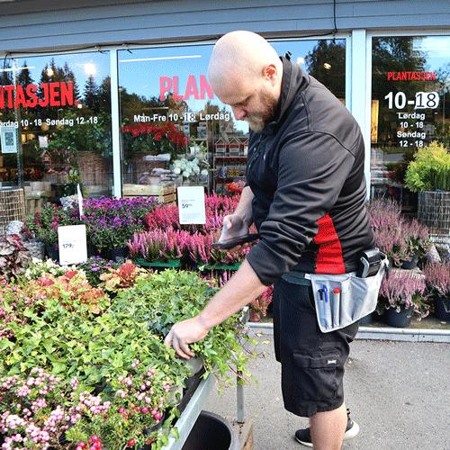 En mann som skanner en plante på et gartneri